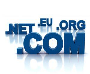 Kaj je spletna domena?